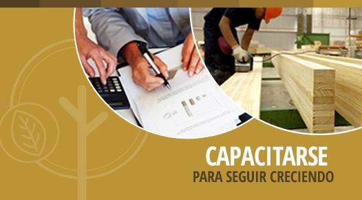 Posgrado en Dirección Estratégica de PyMEs de la Madera y el Mueble